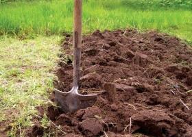 Земельная реформа откладывается. Из политических окопов полезли герои