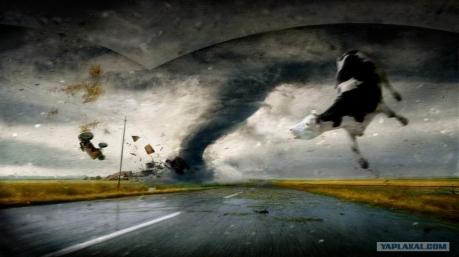 Маразмы дня: ураган в апелляционном суде, любовный гороскоп Порошенко и астральный фантом Ирины Геращенко