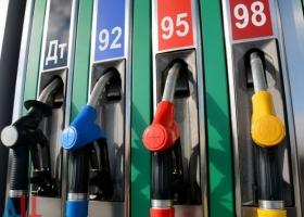 Замминистра финансов Светлана Воробей закрывает глаза на «бодяжное» топливо – СМИ