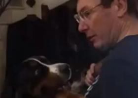 Танцы с собакой: домашнее видео Генпрокурора мгновенно стало хитом