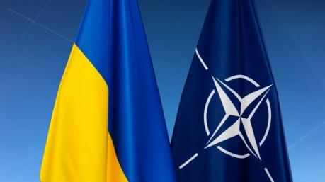 Надо или не надо: Столтенберг и Порошенко заочно поспорили о заявке Украины в НАТО