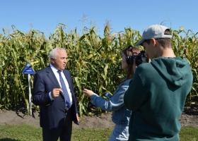 Держава має розвивати власну селекцію: на Київщині продемонстрували майже 100 новітніх сортів кукурудзи