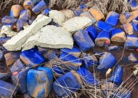 В реку под Киевом выбросили тысячи канистр с неизвестным веществом