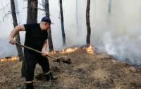 Украинские власти не спешат обвинять боевиков в систематических пожарах на Луганщине