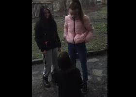 В Кривом Роге школьницы поставили на колени и жестоко избили сверстницу