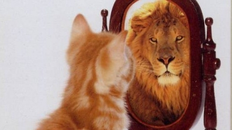 Маразмы дня: Президент и зеркало, субстанция для Каплина и неприкасаемая АП