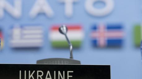 Долгая дорога в НАТО: референдум как предвыборная технология?
