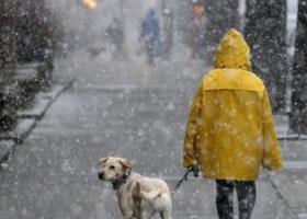 Сегодня Украину накроют дожди со снегом и резко похолодает до +1° (карта)