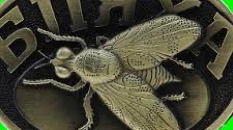 Маразмы дня: сорта вранья от Гончаренко, милицейская сотня Генпрокурора и бляха-муха третьего тысячелетия