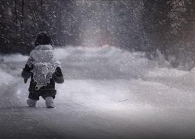 Родителей так и не дождалась: в Запорожской области пятилетнюю девочку в мороз высадили в лесополосе