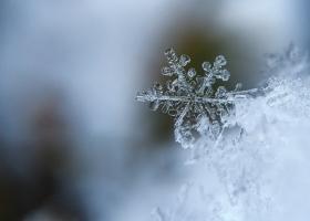 На днях в Украине выпадет первый снег - синоптики