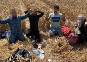 Пограничники задержали рекордное количество нелегалов из Беларуси в Литве