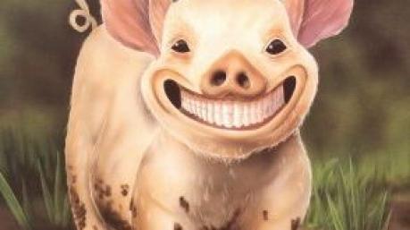 Маразмы дня: свинья в подгузниках, позитивный Гройсман и несгибаемый Ляшко