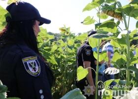 Убийство ребенка на Черниговщине: подозреваемый отец состоял на учете в психбольнице