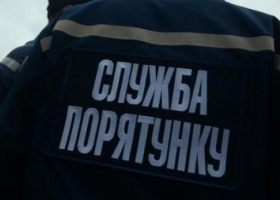 Дама с собачкой: в Киеве удалось спасти женщину, которая едва не утонула, спасая питомца