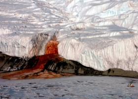 Ученые выяснили причину кровавой окраски водопада, который течет из-под ледника Тейлора