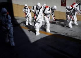 Для завершения пандемии важны действия каждой страны - заявление гендиректора ВОЗ