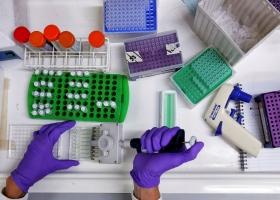 В Кении обнаружили более 15 новых штаммов коронавируса