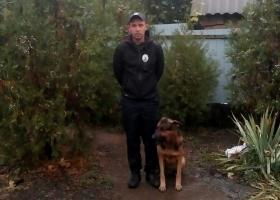 Под Днипром собака помогла поймать извергов, которые жестоко избили и ограбили пенсионерку