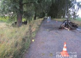 В Черниговской области легковушка влетела в дерево, погибли два человека