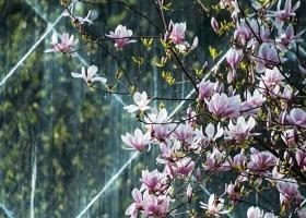 Жары не будет даже в мае: синоптик рассказал, какой погоды нам ждать весной