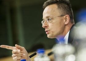 Венгерские реваншисты, которым не понравился закон об украинском языке, надеются на Зеленского